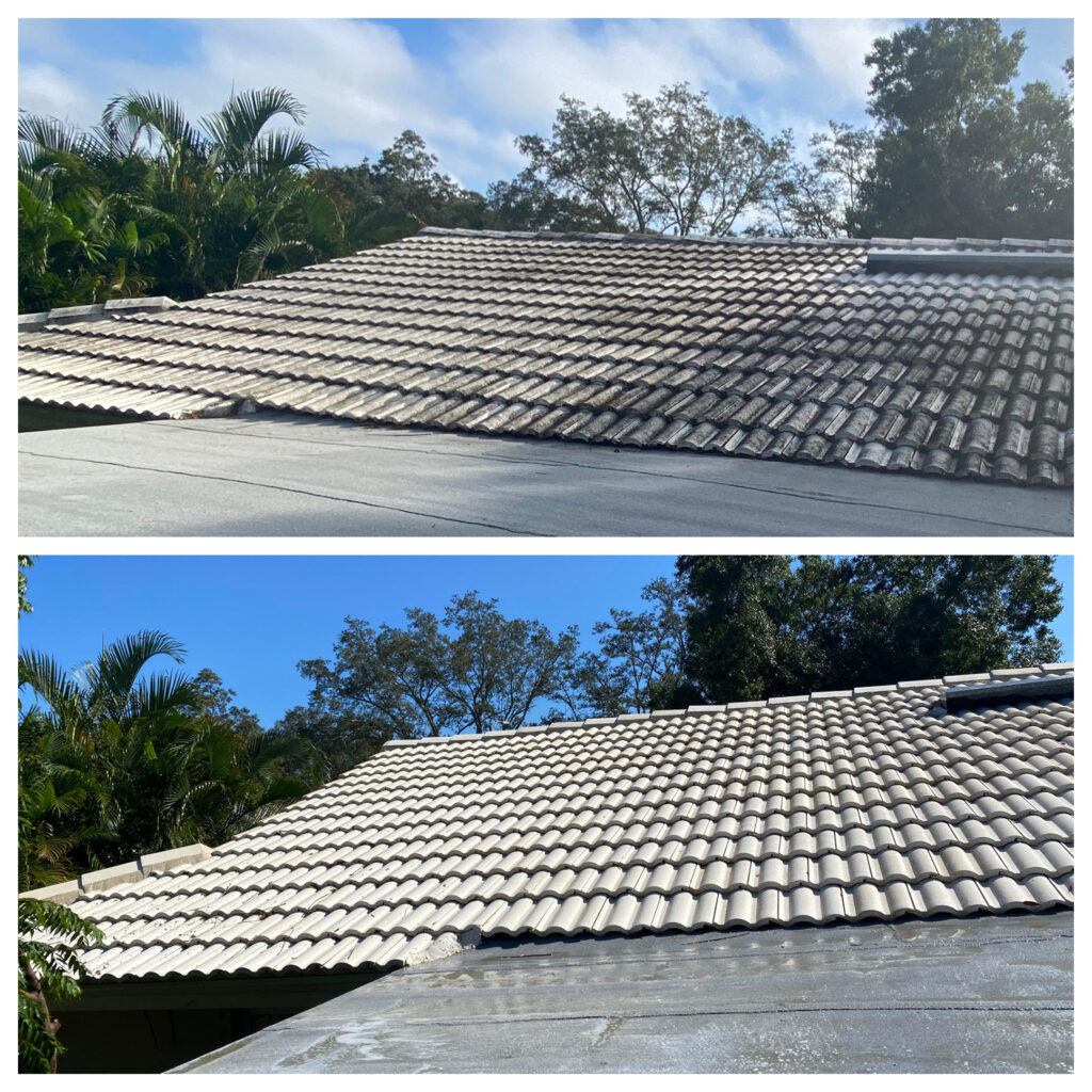 Roof Cleaning tampa florida