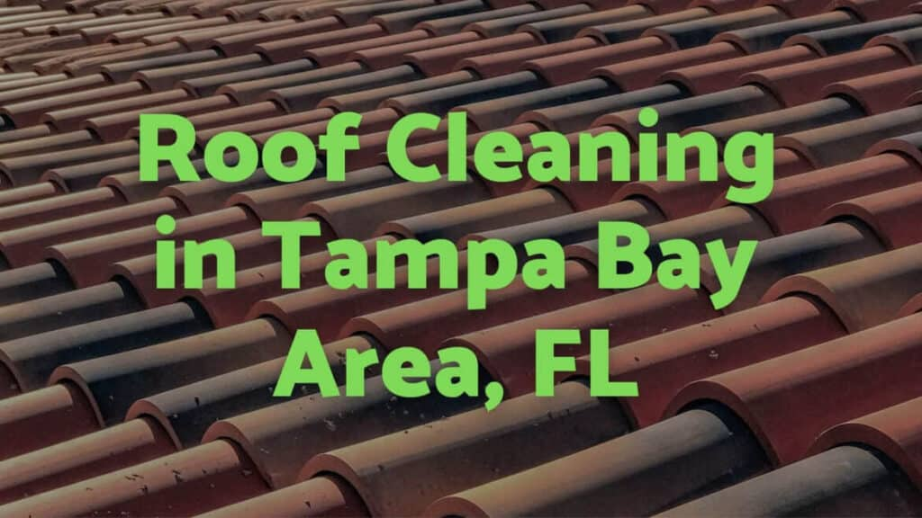 Roof Cleaning Tampa Bay Area, FL